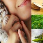Best Natural Foods to Treat Toxoplasmosis