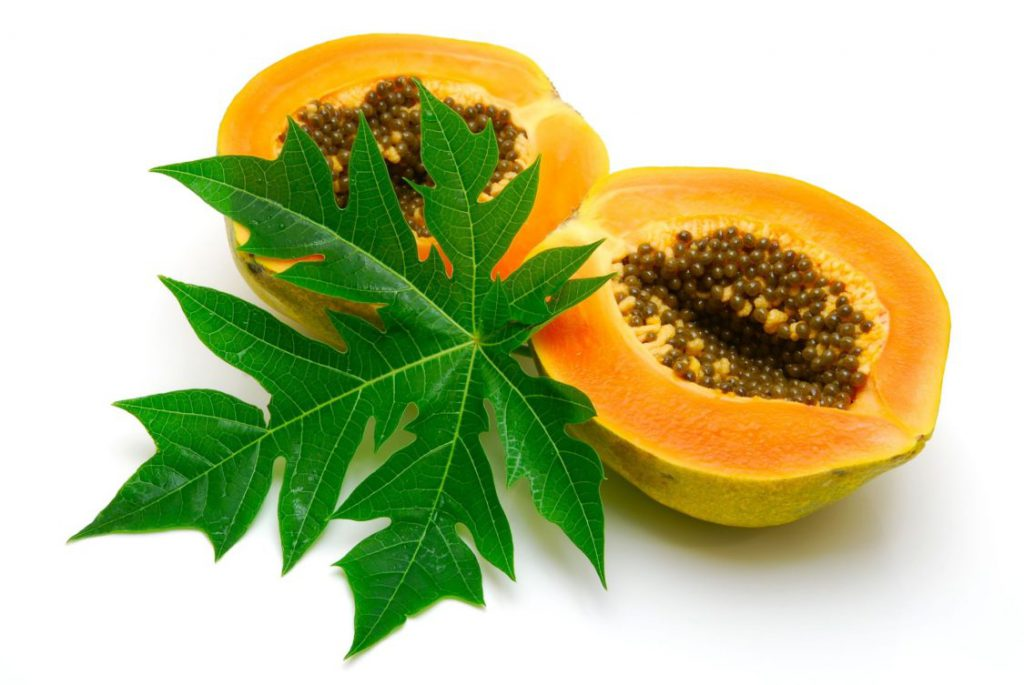 Papaya Leaves and Seeds for white spots
