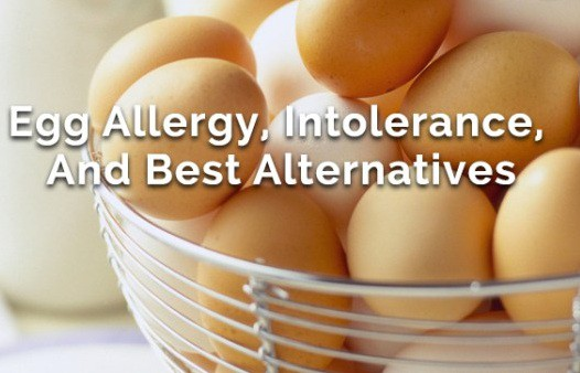 Egg Allergy Foods To Eat