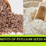 Best Health Benefits of Psyllium Husk and Seeds