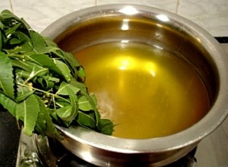 Neem Leaves and Dried Ginger